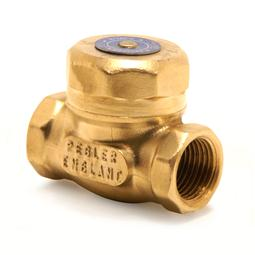 image for 1062 Swing Check Valve