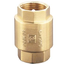 image for 1063 Spring Check Valve