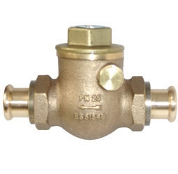 image for PS1060A Swing Check Valve